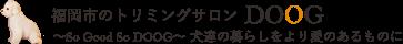福岡市のトリミングサロン DOOG